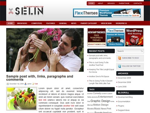 Selin WordPress Theme